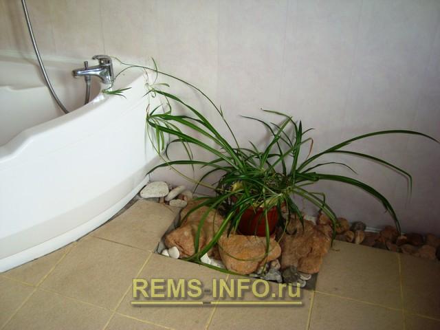 Идеи ремонта для ванной комнаты: свет и зелень в ванной комнате