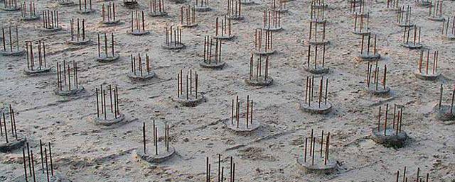 Внешний вид свайного поля из буронабивных свай с арматурными выпусками для связки с ростверком.