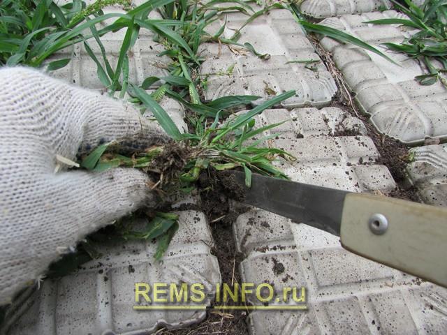 Удаление сорняков из щелей между плитками.