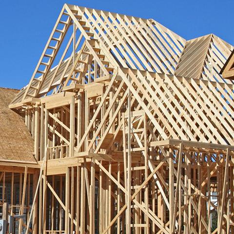 технология строительства каркасного дома плюсы и минусы