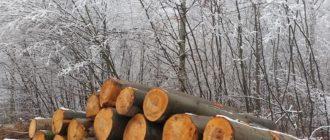 Вес куба дерева