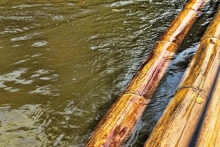 Высокая влажность древесины